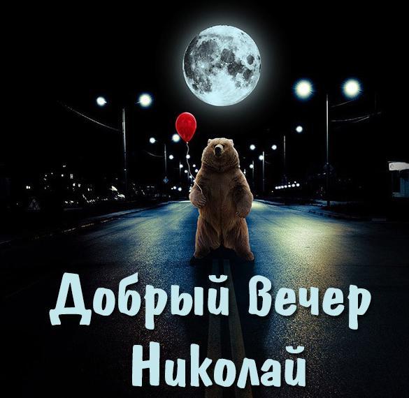 Картинка добрый вечер Николай
