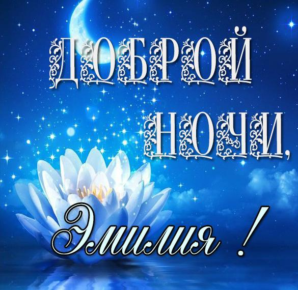 Картинка Эмилия доброй ночи