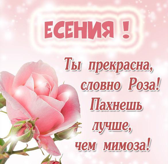 Картинка Есении