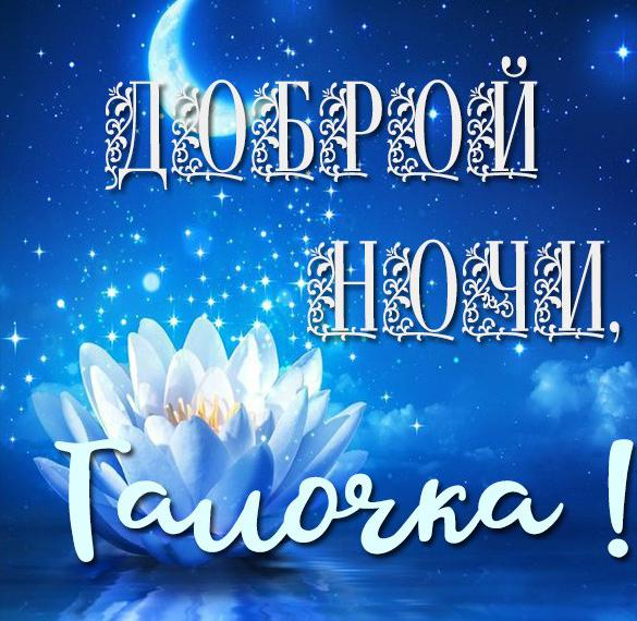 Картинка Галочка доброй ночи