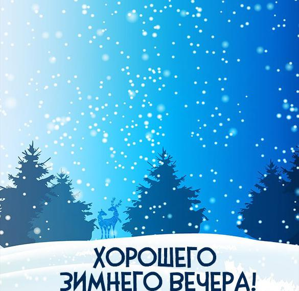 Картинка хорошего зимнего вечера красивая