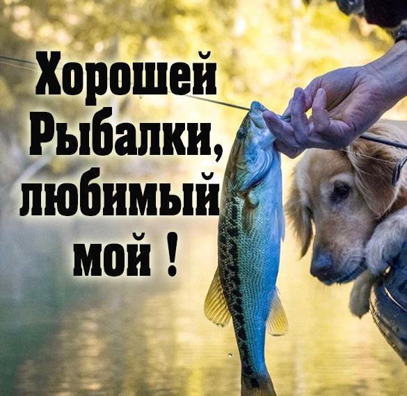 Картинка хорошей рыбалки любимый