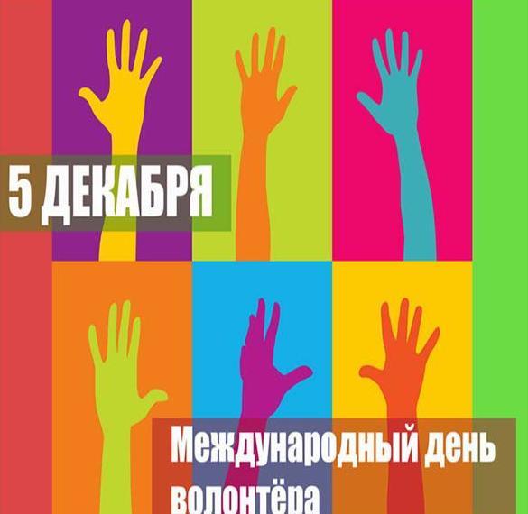 Картинка ко дню добровольца
