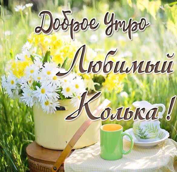 Картинка любимый Колька доброе утро