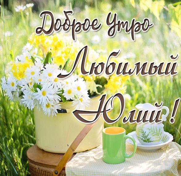 Картинка любимый Юлий доброе утро