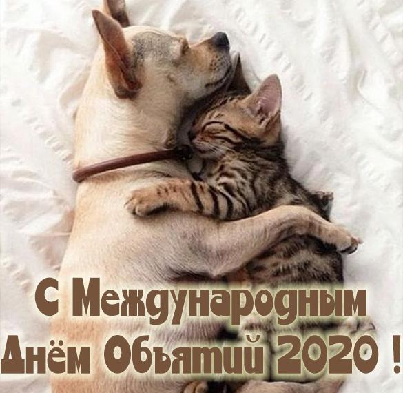 Картинка на международный день объятий 2020