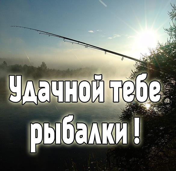 Картинка удачной рыбалки фото