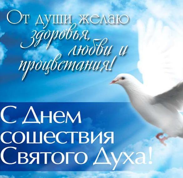 Картинка с поздравлением на Духов день