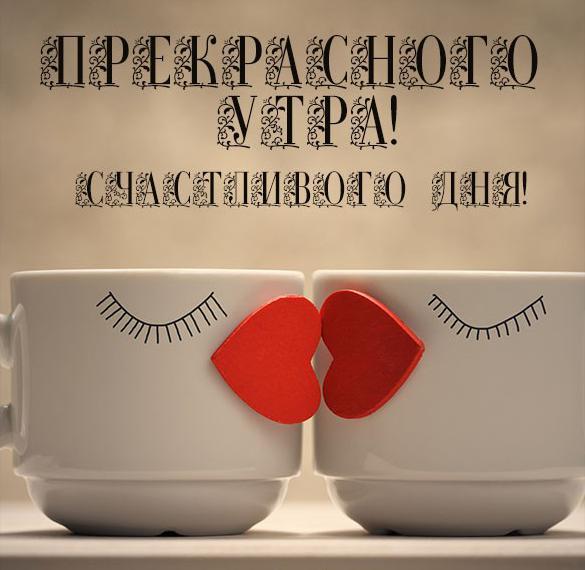 Картинка прекрасного утра и счастливого дня смешная