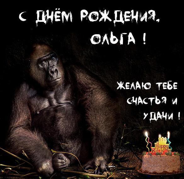Картинка прикол с днем рождения Ольга