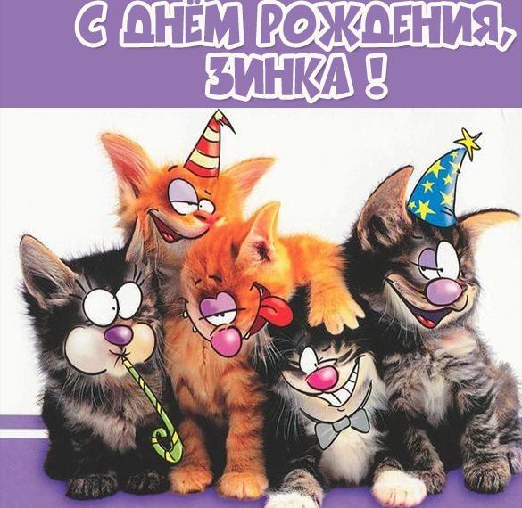 Картинка прикол с днем рождения Зинка