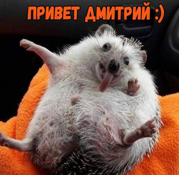 Картинка привет Дмитрий