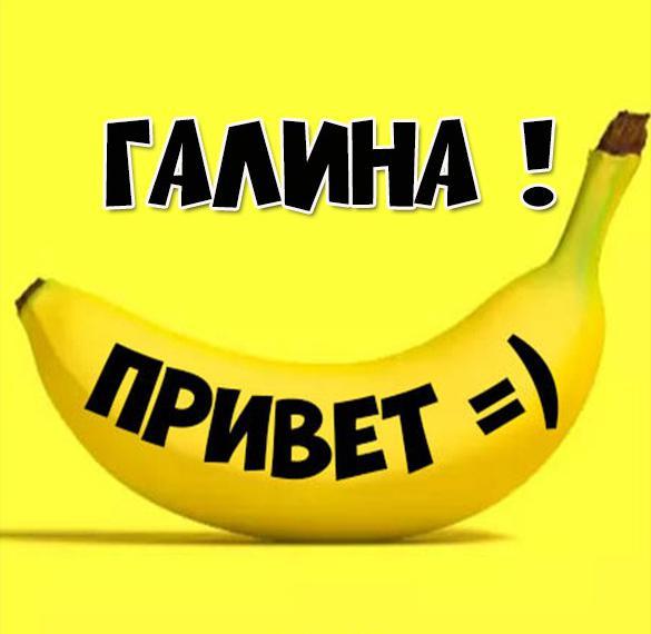 Картинка привет Галина