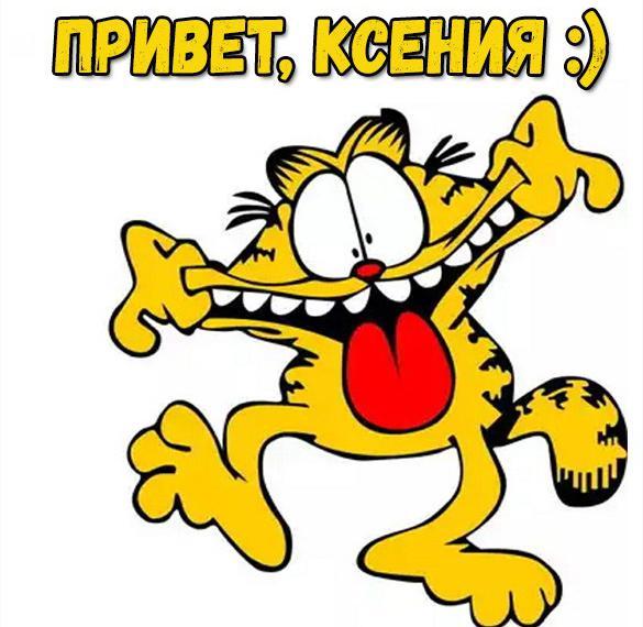 Картинка привет Ксения