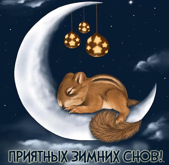 Картинка приятных зимних снов