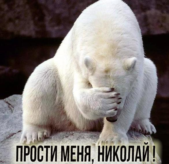 Картинка прости меня Николай