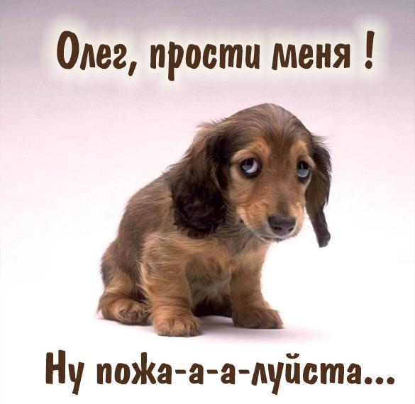 Картинка прости меня Олег