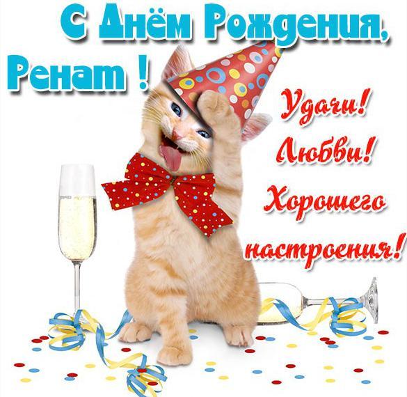 Прикольная картинка с днем рождения для Рената