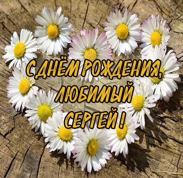 Картинка с днем рождения любимый Сергей