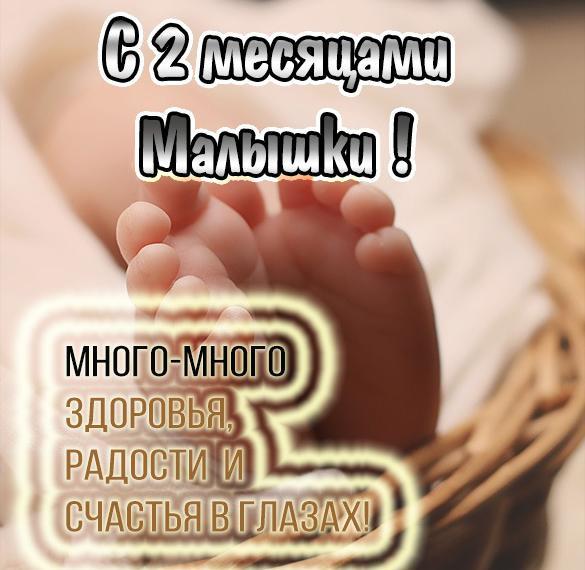 Поздравление родителям с 2 месяцами рождения сына