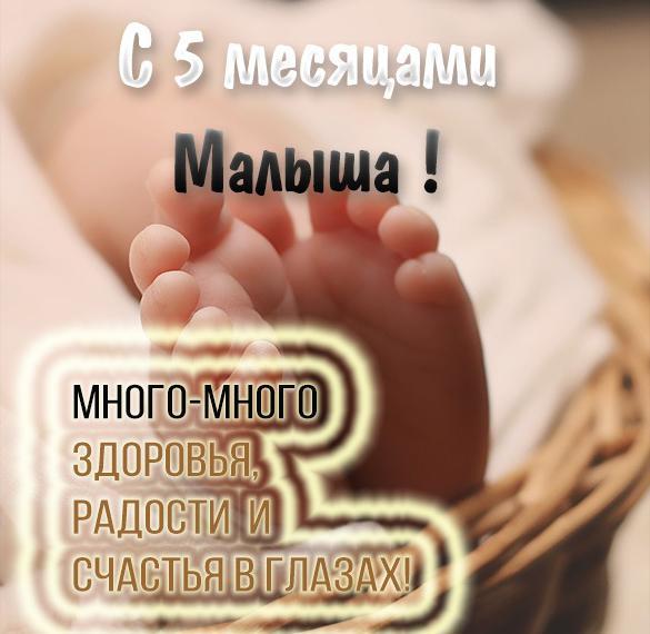 Картинка с днем рождения на 5 месяцев