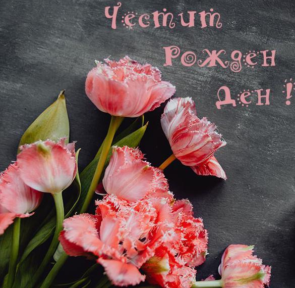 Картинка с днем рождения на болгарском языке