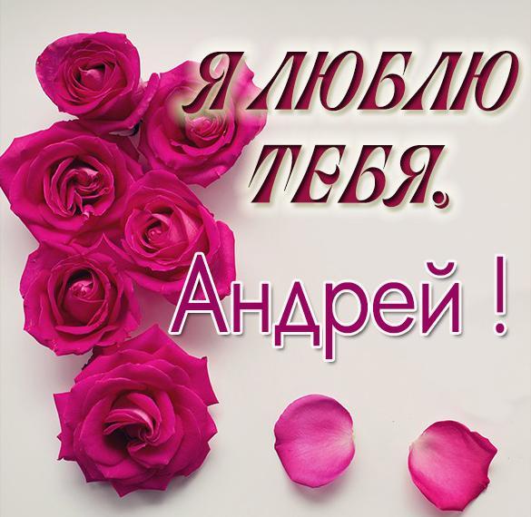 Картинка с именем Андрей я тебя люблю