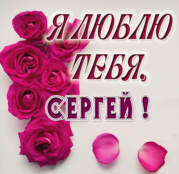 Картинка с именем Сергей я тебя люблю