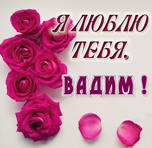 Картинка с именем Вадим я тебя люблю
