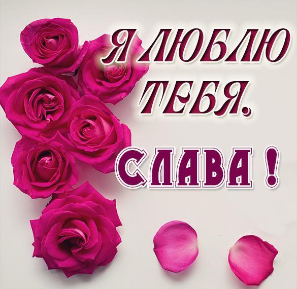 Картинка с надписью Слава я тебя люблю
