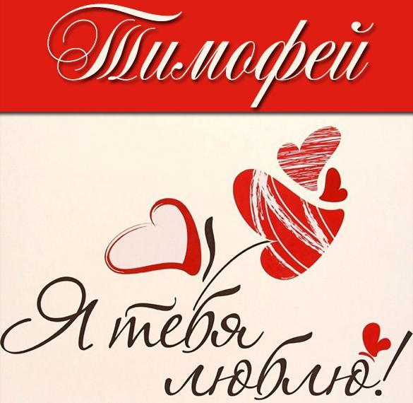 Картинка с надписью Тимофей я тебя люблю