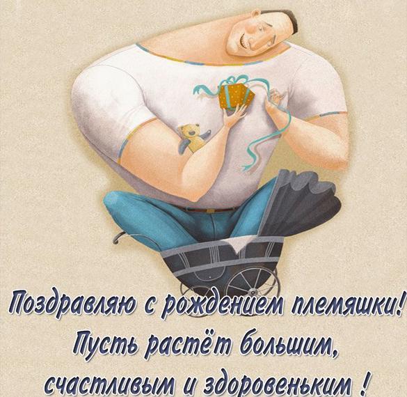 Картинка с рождением племянника с поздравлением