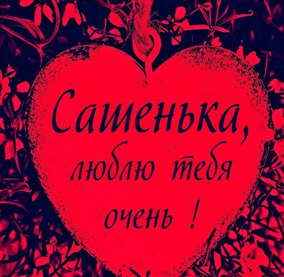 Картинка Сашенька люблю тебя очень