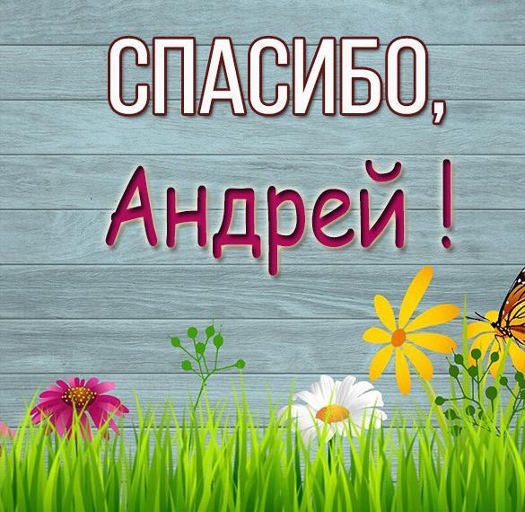 Картинка спасибо Андрей