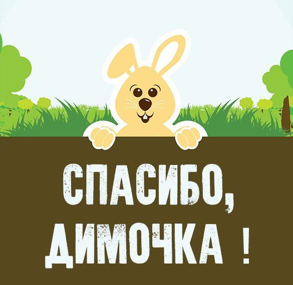 Картинка спасибо Димочка