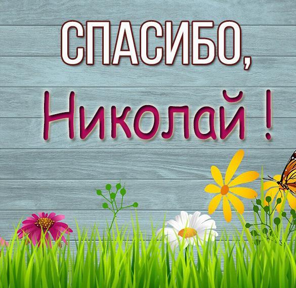Картинка спасибо Николай