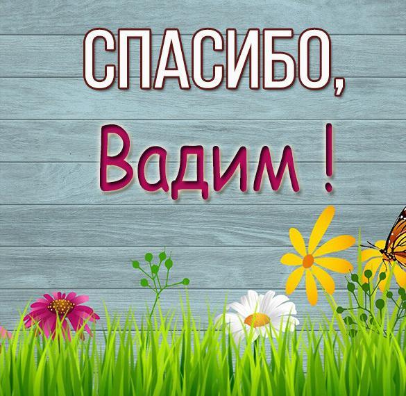 Картинка спасибо Вадим