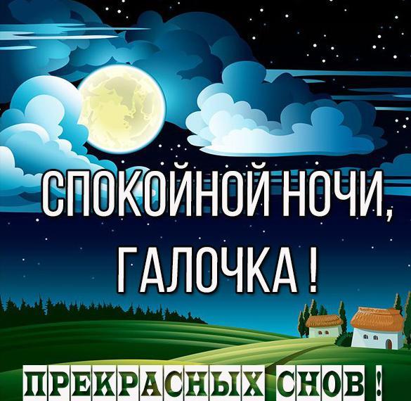 Картинка спокойной ночи Галочка