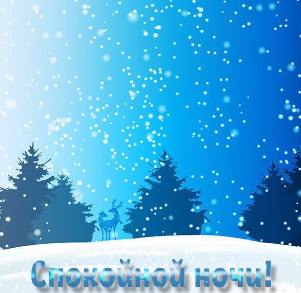 Картинка спокойной ночи красивая необычная зима природа