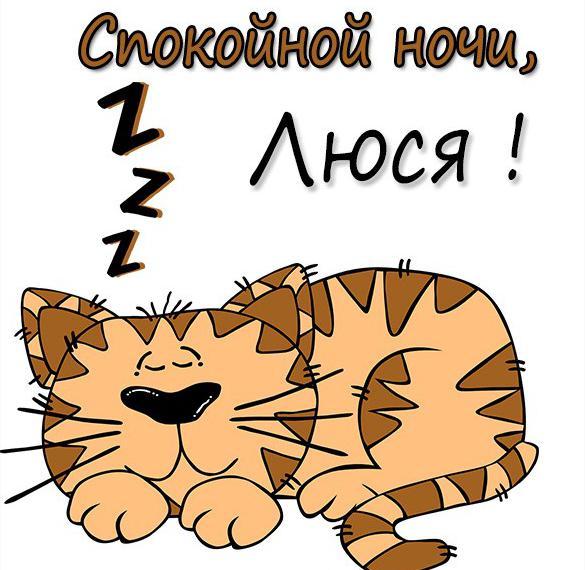 Картинка спокойной ночи Люся