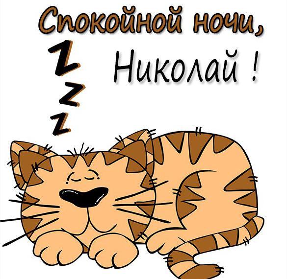 Картинка спокойной ночи Николай