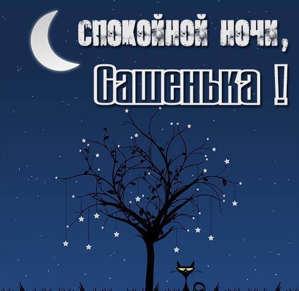 Картинка спокойной ночи Сашенька