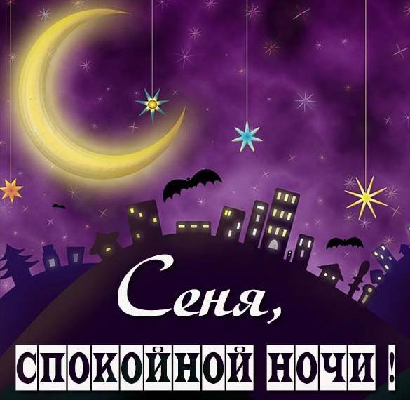 Картинка спокойной ночи Сеня
