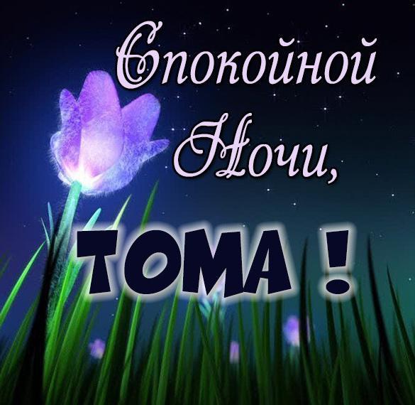 Картинка спокойной ночи Тома