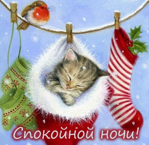 Картинка спокойной ночи зимняя красивая прикольная