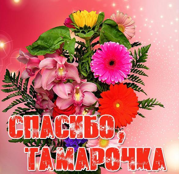 Картинка Тамарочка спасибо