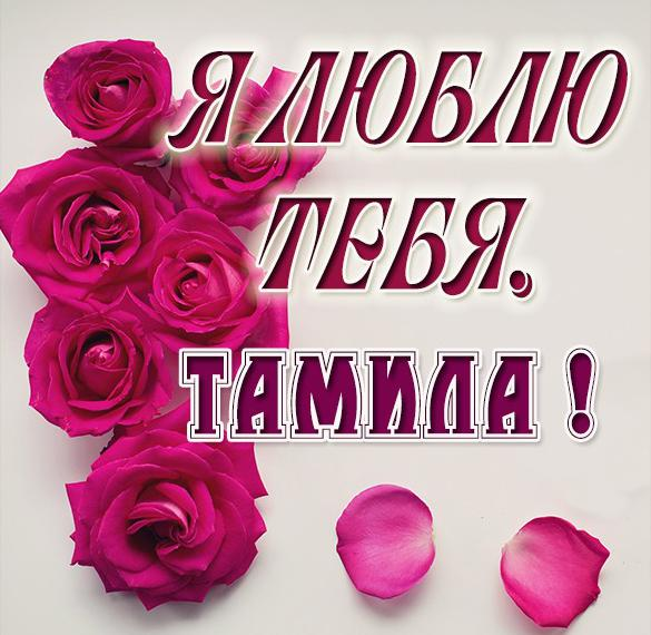 Картинка Тамила я тебя люблю