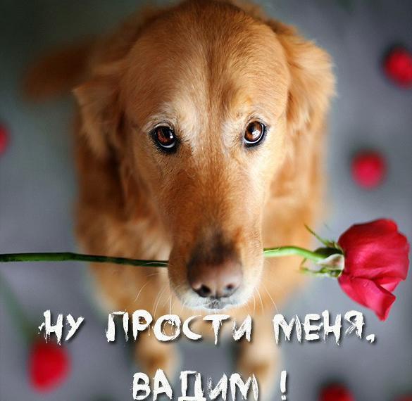 Картинка Вадим прости меня