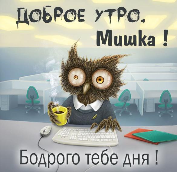 Веселая картинка с добрым утром Мишка