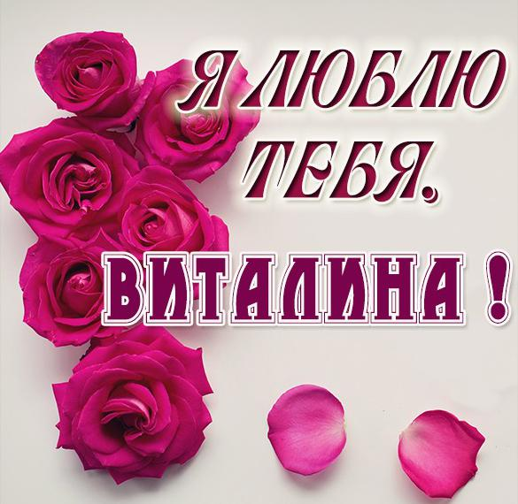 Картинка Виталина я тебя люблю